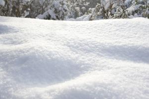 Inuit Snow